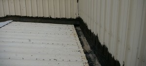 Rusty Metal Roof- Duro last Roofing Des Moines