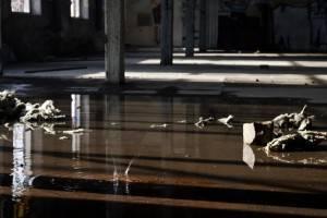Commercial Roof Leak Des Moines